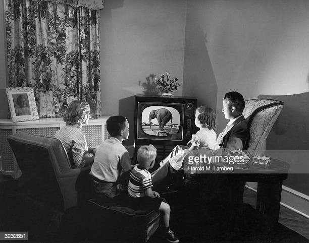 A family watching a television programme in which an elephant performs tricks