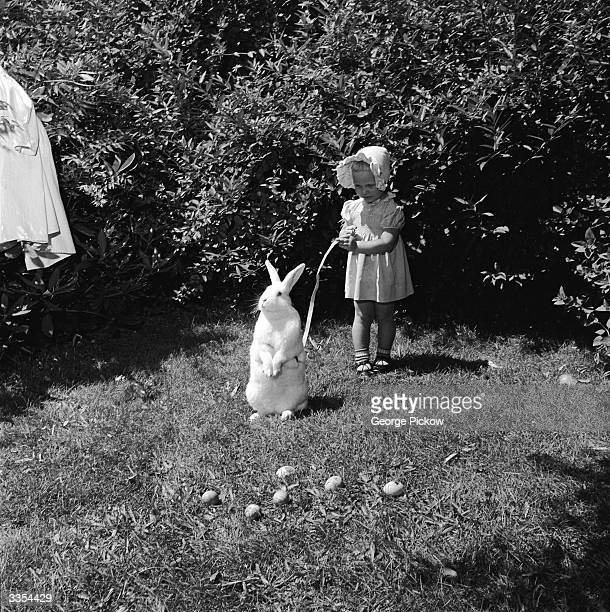 A little girl holds an Easter bunny on a leash during a hunt for the easter eggs scattered in the grass