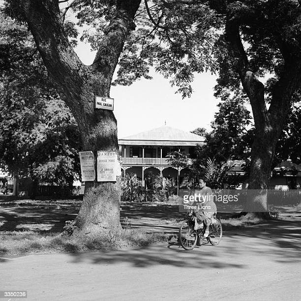 A woman cycles past a tree on which movie bills are posted Papeete Tahiti