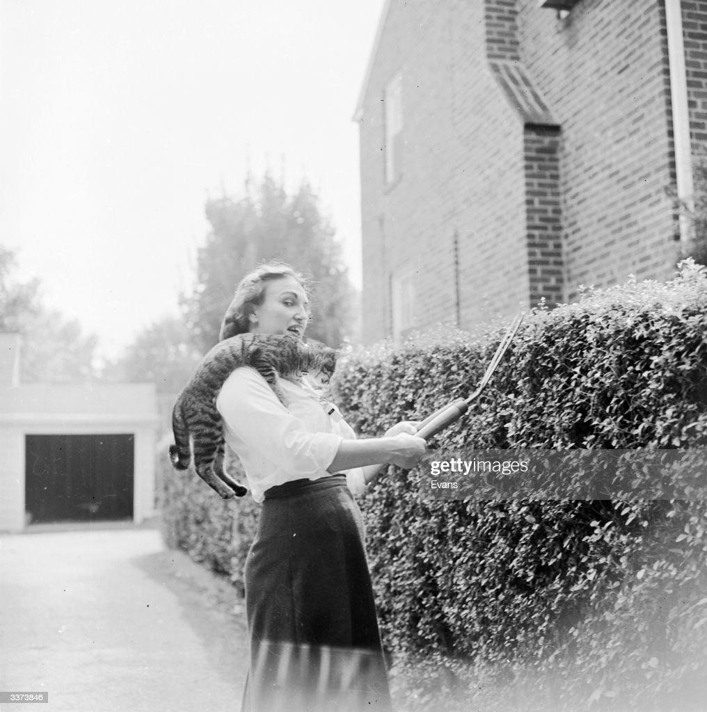 Gardening Companion : News Photo