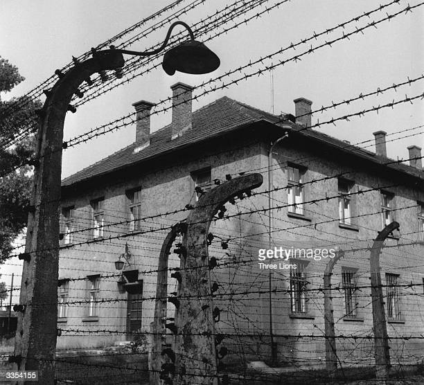 Barbed wire fence at the concentration camp Auschwitz which contained a double layer of barbed wire