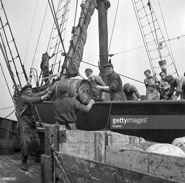 Barrels of preserved herring are transfered from a dutch trawler off the north coast of Holland to a fast cutter that will take the fresh fish to...