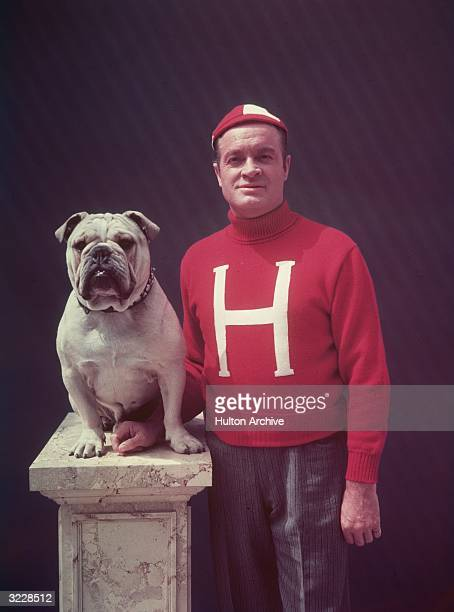 Britishborn actor and entertainer Bob Hope wearing a red varsity football jersey and beanie next to a bulldog sitting on a pillar