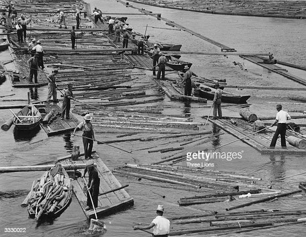 Canadian timber workers sorting timber that has been floated down the river in Ottawa