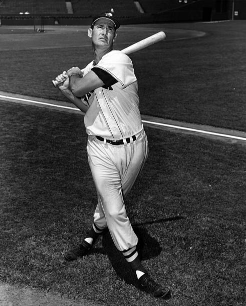 Ted Williams Wall Art