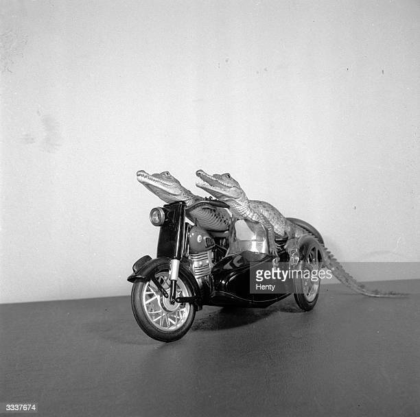 Two young crocodiles on a model motorcycle and sidecar
