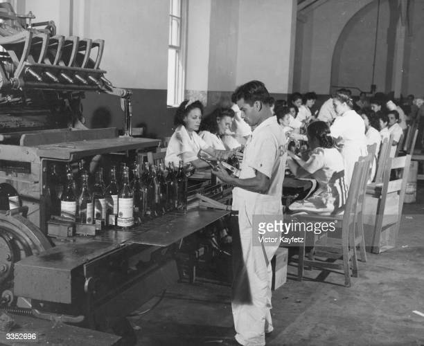 Workers at the Bacardi rum bottling plant
