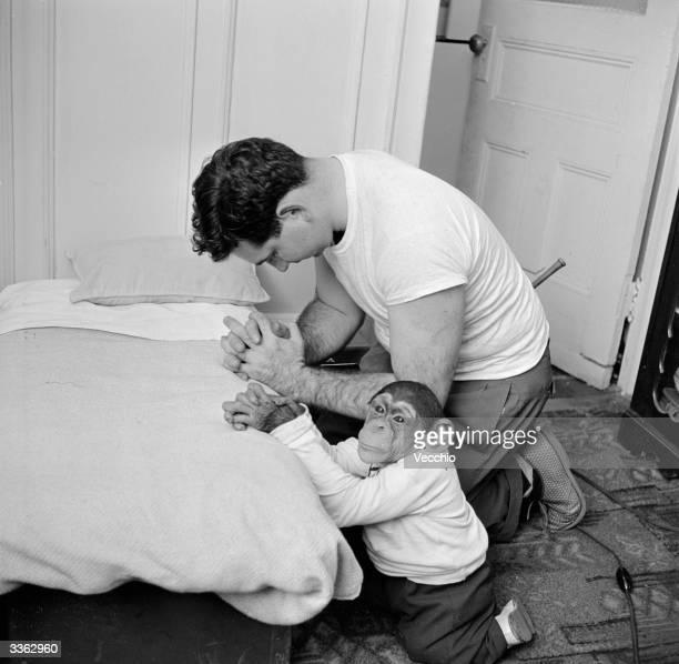 Young chimpanzee Kokomo Jnr praying before bedtime with his owner Nick Corrado at his apartment in New York City