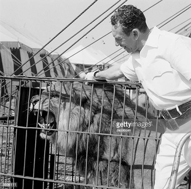 A lion tamer with a circus lion