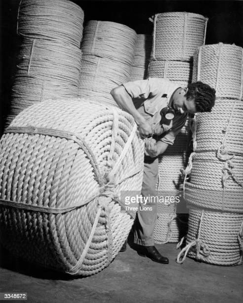 A workman secures a bail of 1 1/4 inch sisal hemp rope at the Doughtery Cordage Company rope factory in Caracas Venezuela ready for export to the US