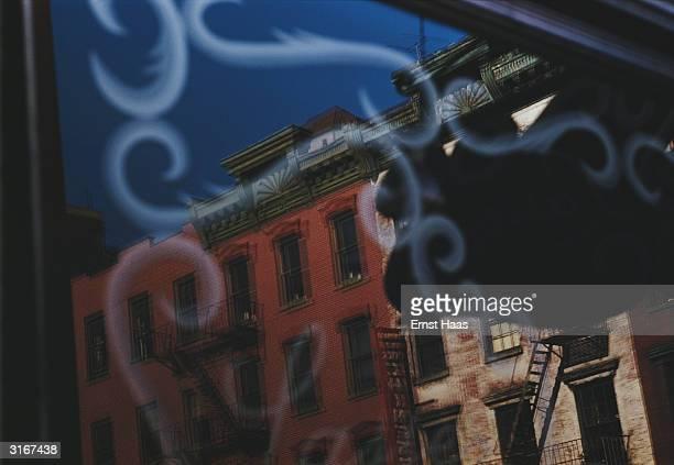 The reflection of a red brick tenement building in a New York shop window