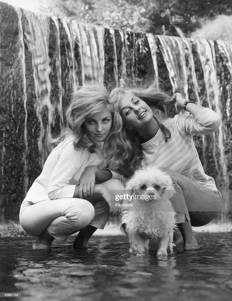 Twins With Poodle : News Photo