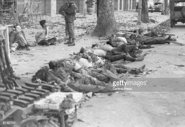 Corpses lying on the pavement while soldiers question a prisoner in Vietnam
