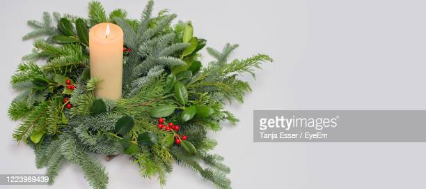 a circle of branches of different fir varieties. green and blue nordmann fir branches and ilex - christmas decore candle stock pictures, royalty-free photos & images