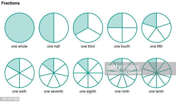 Circles divided into portions to illustrate the following fractions one whole one half one third one fourth one fifth one sixth one seventh one...