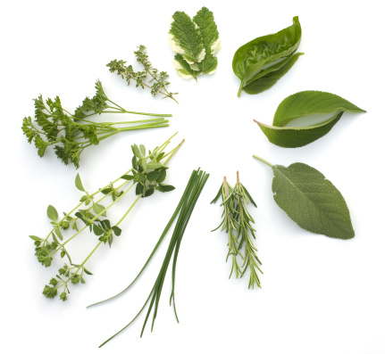 Circular arrangement of various herbs, isolated on white 157293216