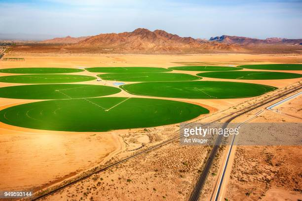 circular crop fields in the desert - crop circle stock pictures, royalty-free photos & images