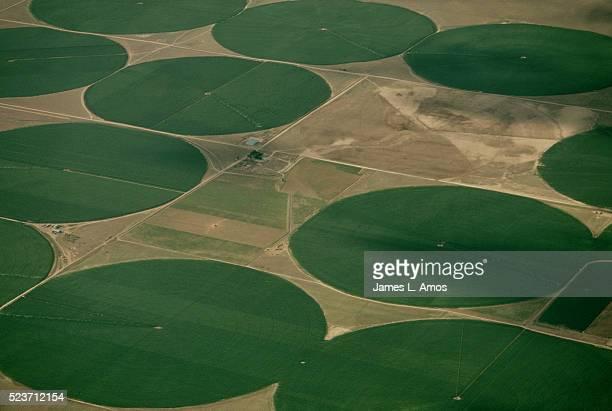 circular crop fields - kornkreis stock-fotos und bilder