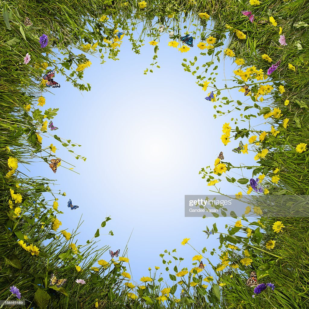 Circular Meadow : Stockfoto