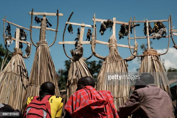 Circumcised Maasai young men wearing a ritual costume covered with hunted birds come out from the bush to receive blessing from ceremony masters near...