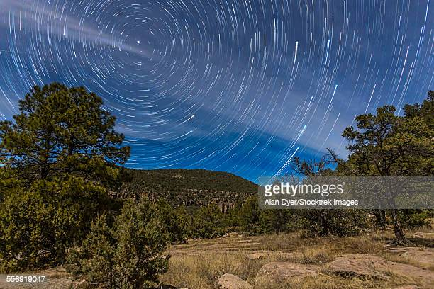 circumpolar star trails over the gila national forest in southern new mexico. - grande carro costellazione foto e immagini stock