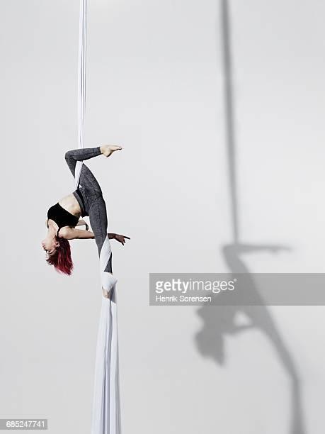 circus artist in silks - evento de entretenimento imagens e fotografias de stock