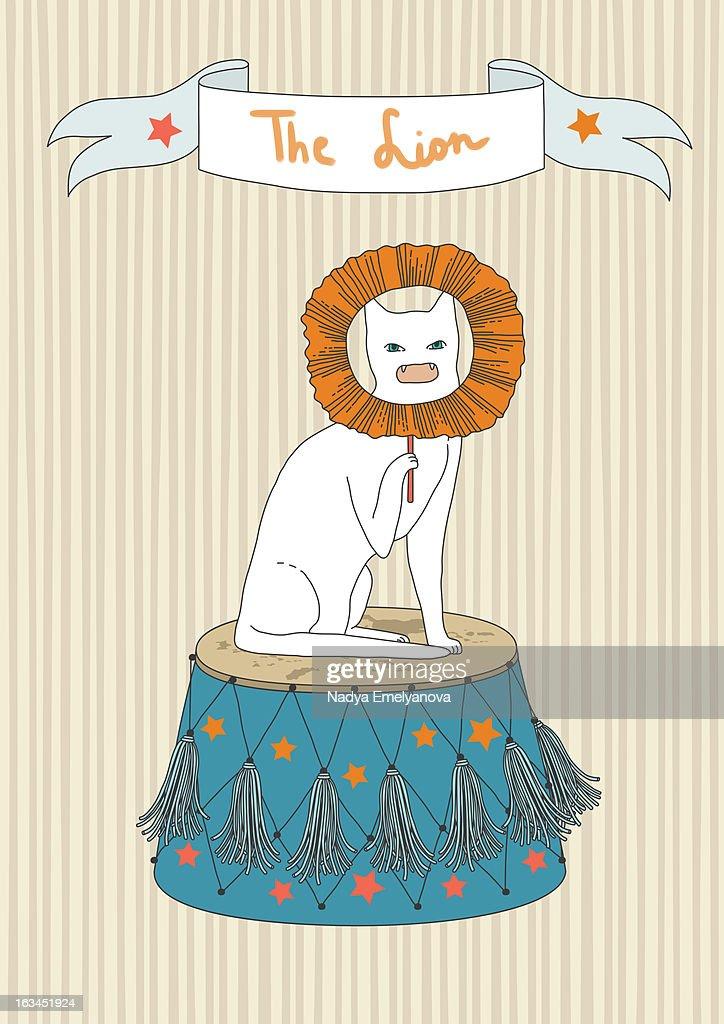 Circus cat : Bildbanksbilder