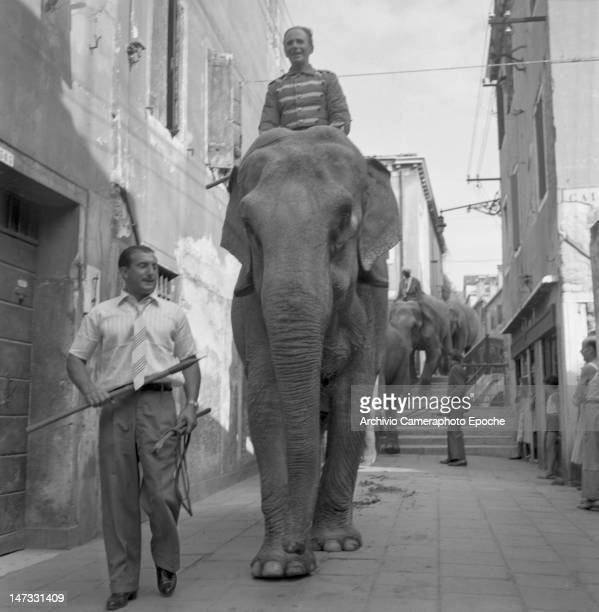 Circus elephants crossing the city with theyr trainer Venice 1954