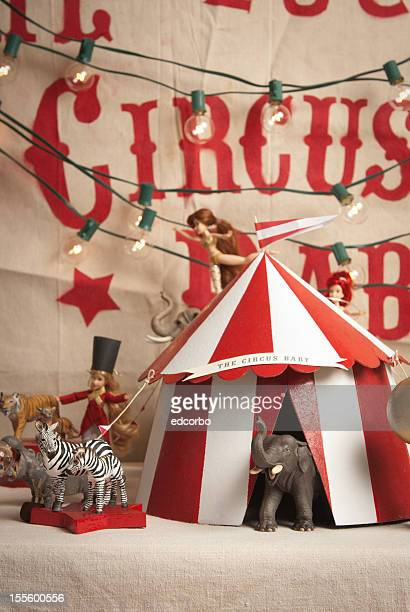 circus - circus stock pictures, royalty-free photos & images
