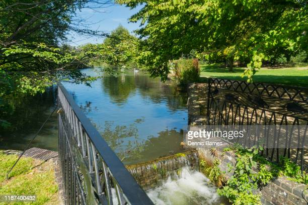 cirencester; park, pond, lake,  gloucestershire; uk; england - cirencester stock pictures, royalty-free photos & images