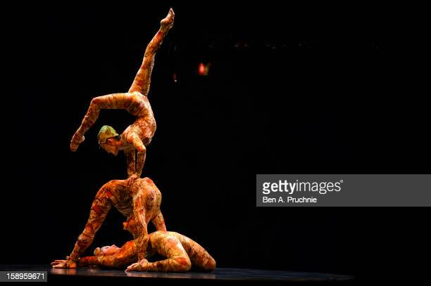 Cirque Du Soleil acrobats perform during the dress rehearsal of Cirque Du Soleil Kooza at Royal Albert Hall on January 4 2013 in London England