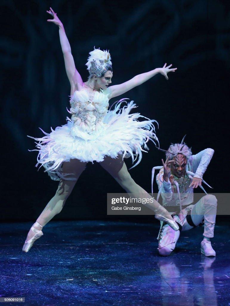 Cirque du Soleil performer injured during swing act at