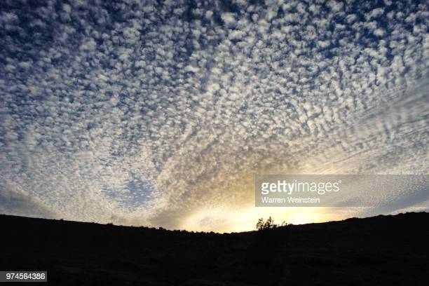cirrocumulus clouds over landscape silhouette, canyon de chelly national monument, arizona, usa - weinstein stock pictures, royalty-free photos & images