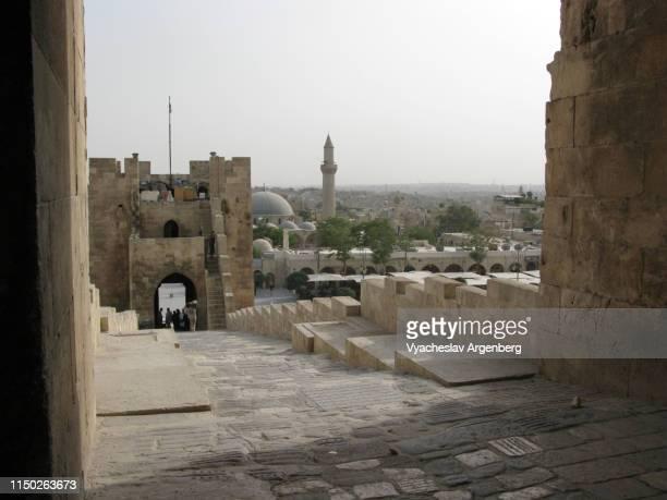 citadel of aleppo, syria, medieval fort - argenberg imagens e fotografias de stock