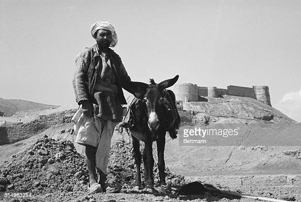 Cities of the WorldKabul An Afghan farmer uses his donkey to work his land which is near the Bella Hesar present Afghani Military Academy The Academy...