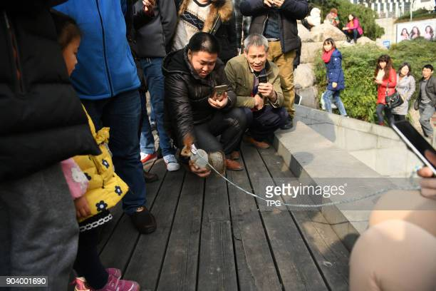 A citizen take her pet squirrel shopping on 11th January 2018 in Chongqing China