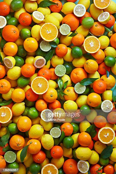 citrus fruit overhead - fruit stock pictures, royalty-free photos & images