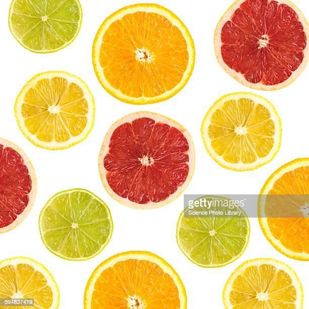 citrus fruit slices - citrus fruit stock pictures, royalty-free photos & images