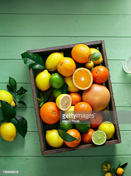 citrus fruits overhead in tray - citrus fruit stock pictures, royalty-free photos & images