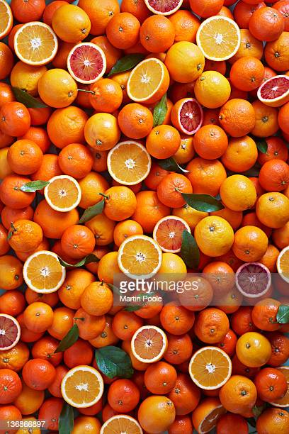 citrus fruits overhead - orange stock pictures, royalty-free photos & images