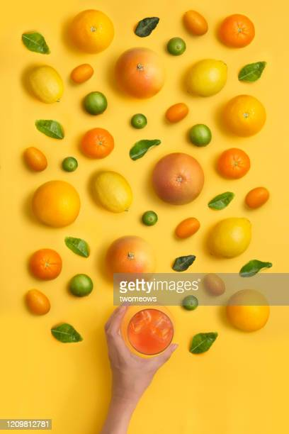 citrus fruits still life image. - still life stock pictures, royalty-free photos & images