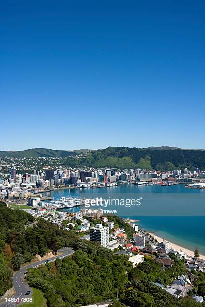 city and harbour from mt. victoria lookout. - wellington new zealand stock pictures, royalty-free photos & images