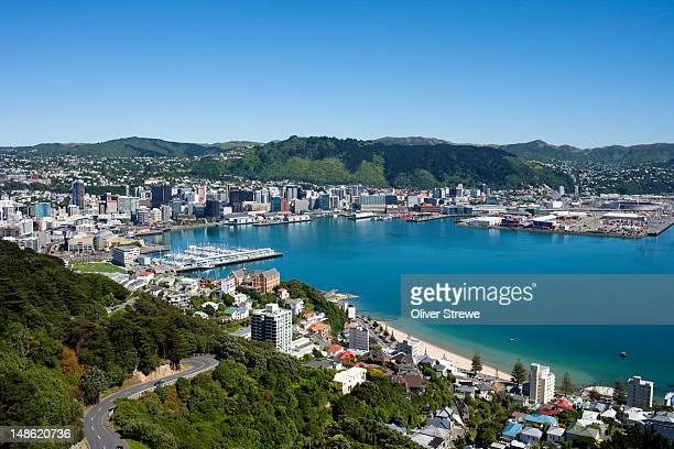 city and harbour from mt. victoria lookout. - ニュージーランド首都 ウェリントン ストックフォトと画像