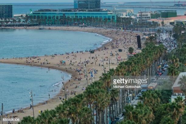 City beach of Barcelona La Barceloneta with palm trees on August 18 2017 in Barcelona Spain