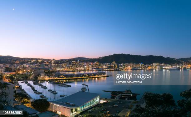 city buildings and harbour, wellington, new zealand. - wellington new zealand stock pictures, royalty-free photos & images