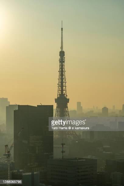 city buildings and tokyo tower in tokyo of japan - taro hama ストックフォトと画像