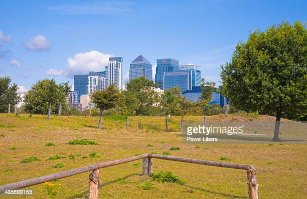 City farm in London Docklands with the view on skyscrapers in Docklands Financial District