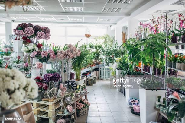 city flower shop - florist stock pictures, royalty-free photos & images