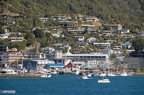 city from harbour. - marlborough new zealand stock pictures, royalty-free photos & images