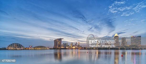 city garden - singapore flyer stock photos and pictures